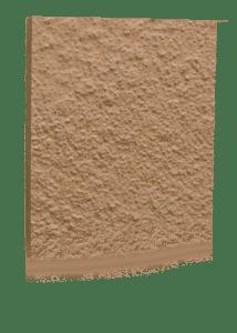 Desert_tan_stongard